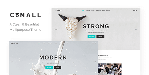 Conall 2.3 – A Clean & Beautiful Multipurpose Theme