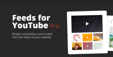 feeds-for-youtube-pro