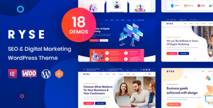 Ryse 3.0.2 – SEO & Digital Marketing Theme