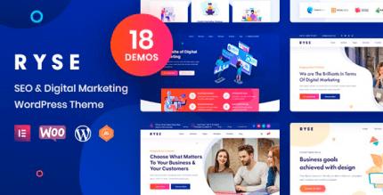 Ryse 3.1.1 – SEO & Digital Marketing Theme