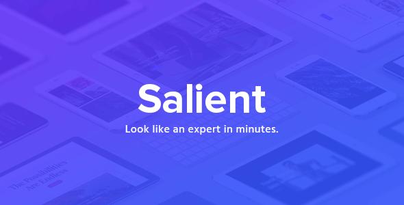 Salient 13.0.7 – Responsive Multi-Purpose Theme