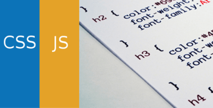 Simple Custom CSS and JS PRO 4.24 NULLED