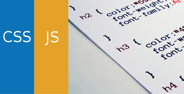 Simple Custom CSS and JS PRO 4.25 NULLED